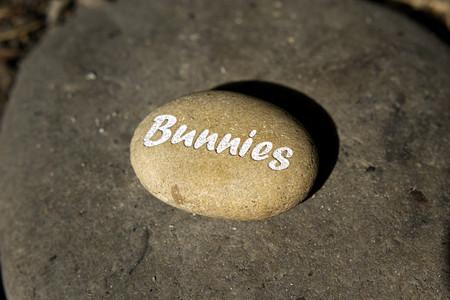 """Gravierter Stein mit heller Aufschrift """"Bunnies"""""""